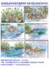 """Отличени творби  в конкурса за комикс на тема: """"Истории в езерото"""" - 2015 г."""