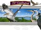 избрано от РИОСВ-Русе