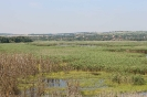 """Изглед към селото от местността """"Камъка"""