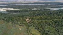 """Резерватът  """"Сребърна"""" е залесен  с нови над 46 000 броя фиданки от местни  растителни видове"""