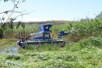 """Косенето на тръстика в резервата """"Сребърна"""" ще се извършва механизирано"""