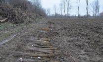 """Залесени са 217,1 дка горски площи в резервата """"Сребърна"""""""